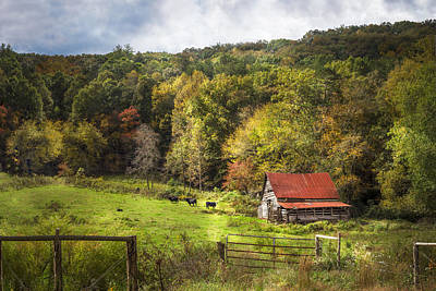 Kentucky Horse Park Photograph - Red Roof In The Smokies by Debra and Dave Vanderlaan
