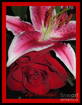 Photograph - Red Rose And Pink Lily by Oksana Semenchenko
