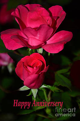 Photograph - Red Rose Anniversary Card by Bob Sample