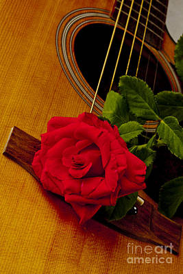 Photograph - Red Rose Bloom Flower On Guitar In Color 3262.02 by M K Miller