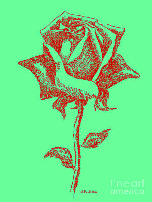 Digital Art - Red Rose Drawings 8 by Gordon Punt