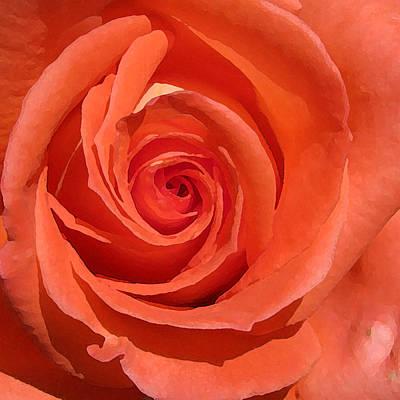 Red Rose Art Print by Eva Csilla Horvath