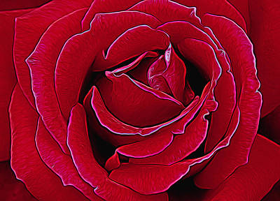 Photograph - Red Rose Glow by Allen Beatty