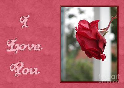 Digital Art - Red Rose I Love You by JH Designs