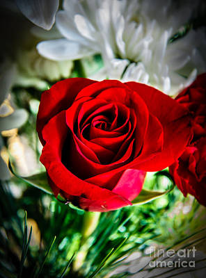 Photograph - Red  Rose In Arrangement by Robert Bales