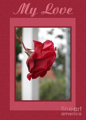 Digital Art - Red Rose My Love by JH Designs