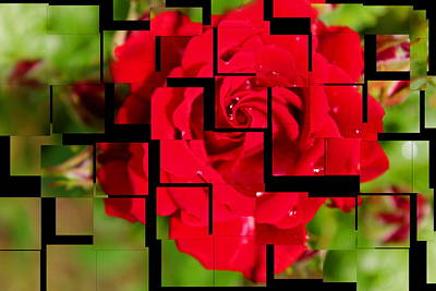 Red Rose Puzzle Art Print by Julia Fine Art And Photography