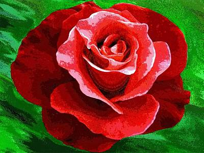 Abstract Digital Digital Art - Red Rose Radiance by Will Borden