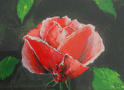 Painting - Red Rose Study by Kathy Spall