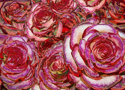 Fuschia Photograph - Red Roses Painting by Alixandra Mullins