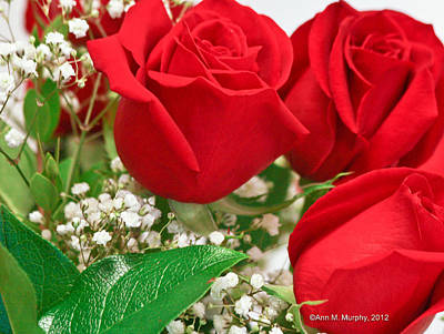 Photograph - Red Roses With Baby's Breath by Ann Murphy