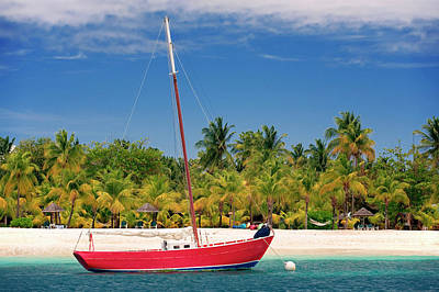 Red Sailboat Moored Off Of Palm Island Art Print by Susan Degginger