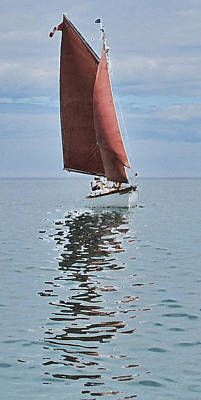 Photograph - Red Sails by Ian  MacDonald