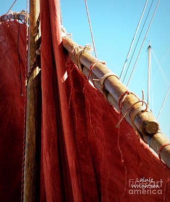 Red Sails Art Print by Lainie Wrightson