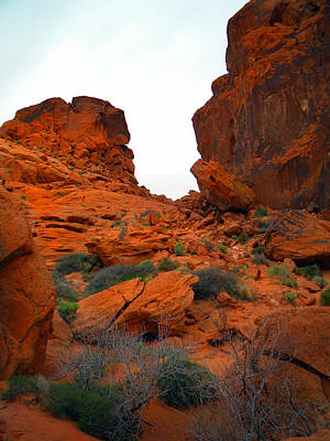 Photograph - Red Sandstone Formations Valley Of Fire by Frank Wilson