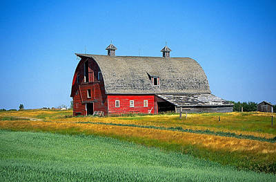 Design Turnpike Books - Red Saskatchewan Barn by Buddy Mays