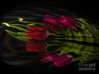 Photograph - Red Satin Ripple by Shirley Mangini