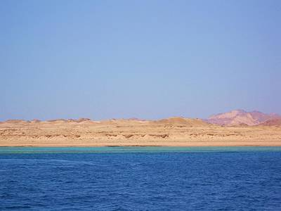 Egypt Photograph - Red Sea  by Alice Butera