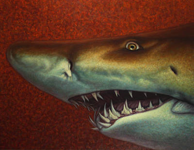 Sharks Painting - Red Sea Shark by James W Johnson