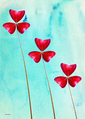 Red Shamrock Trio Art Print