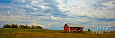 Red Shed Art Print by Chuck Flewelling
