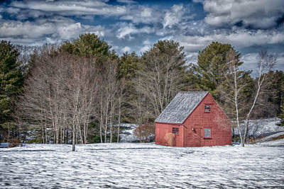 Red Shed In Maine Art Print by Guy Whiteley
