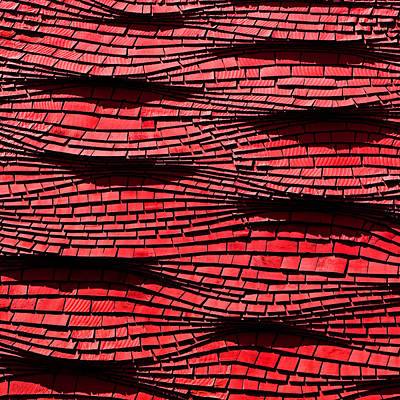 Red Shingles Art Print by Art Block Collections
