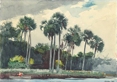 Winslow Homer Seascape Painting - Red Shirt Homosassa Florida  by Winslow Homer