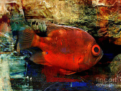 Photograph - Red Short Big-eye Fish by Chris Scroggins