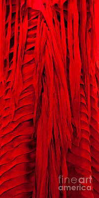 Photograph - Red Silk 02 by Rick Piper Photography