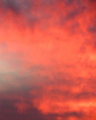 Photograph - Red Sky At Night by Laurel Powell