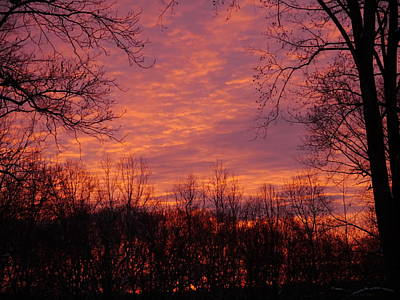 Photograph - Red Sky At Night by Richard Reeve