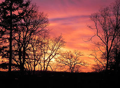 Photograph - Red Sky At Night Sailor's Delight by Cheryl Hoyle