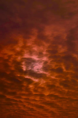 Photograph - Red Sky by Deprise Brescia