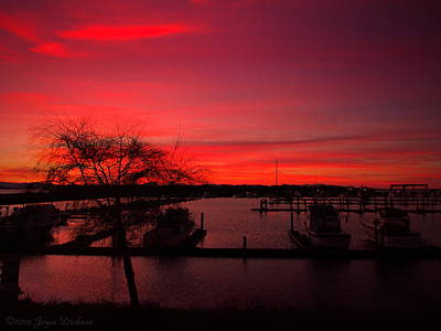 Photograph - Red Sky In The Morning Two by Joyce Dickens
