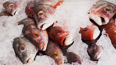 Healthy Digital Art - Red Snapper by Aged Pixel