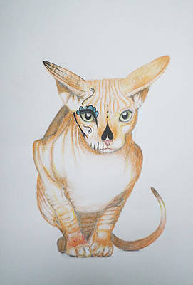 Sphynx Cat Art Drawing - Red Sphynx Cat - Day Of The Dead Kitty Mask Series by Vera B