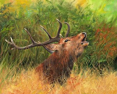 Stag Painting - Red Stag by David Stribbling