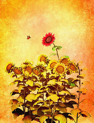 Sunflowers Royalty-Free and Rights-Managed Images - Red Sunflower by Bob Orsillo