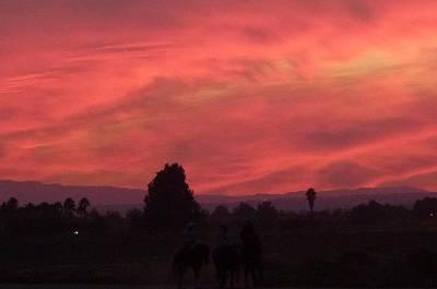 Photograph - Red Sunset 1 by Susan Garren
