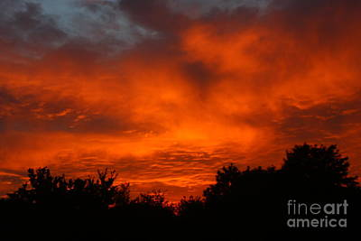Photograph - Red Sunset by Jeremy Hayden