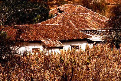 Photograph - Red Tile Roof Pattern by Robert  Rodvik