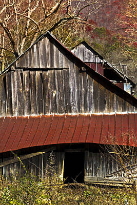 Red Tin Roof Art Print by Debra and Dave Vanderlaan