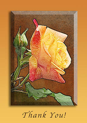 Red To Yellow Rose Thank You Art Print by Michael Peychich