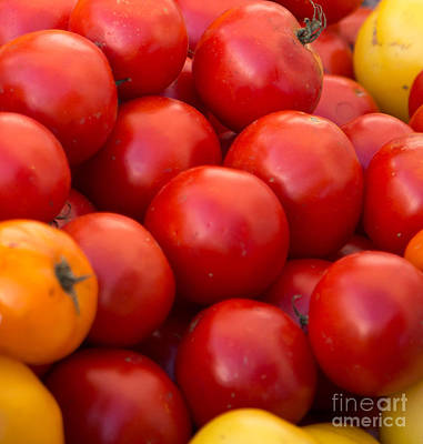 Photograph - Red Tomatoes Closeup by Rebecca Cozart