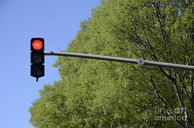 Red Traffic Light By Trees Art Print by Sami Sarkis