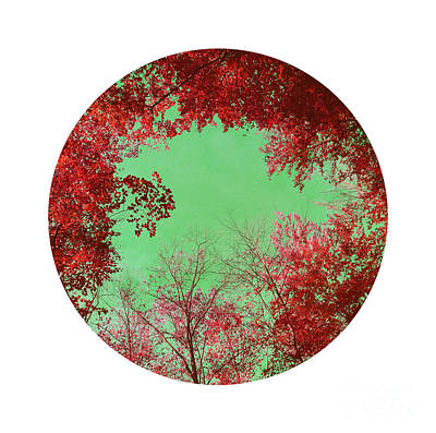 Red Trees Art Print by Angela Bruno
