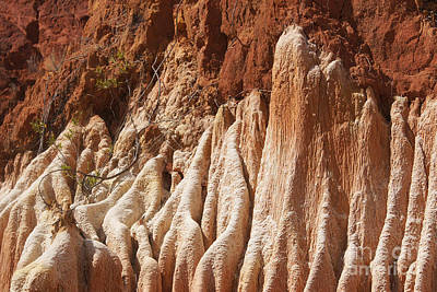 red Tsingy Madagascar Art Print by Rudi Prott