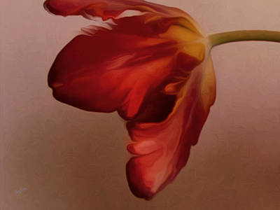 Digital Art - Red Tulip by Nop Briex