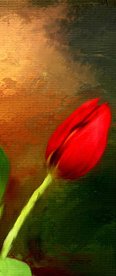 Red Tulips Triptych Section 3 Print by Lourry Legarde